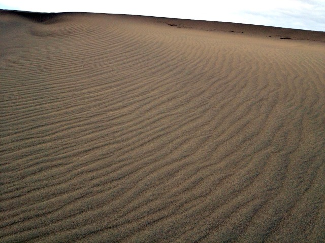 Sand Dune // Death Valley National Park via Campfire Chic
