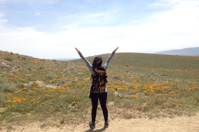 Antelope Valley Poppy Reserve State Park in California - Campfire Chic