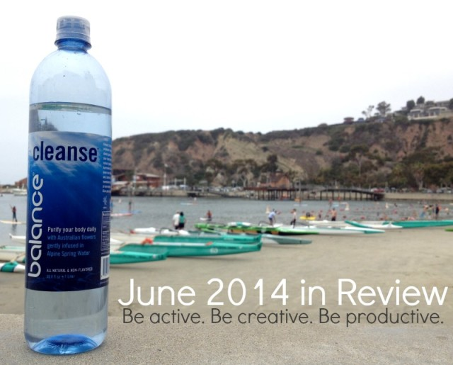June 2014 in Review with Campfire Chic