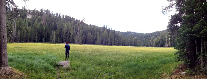 Sequoia National Park - Cahoon Meadow - Campfire Chic