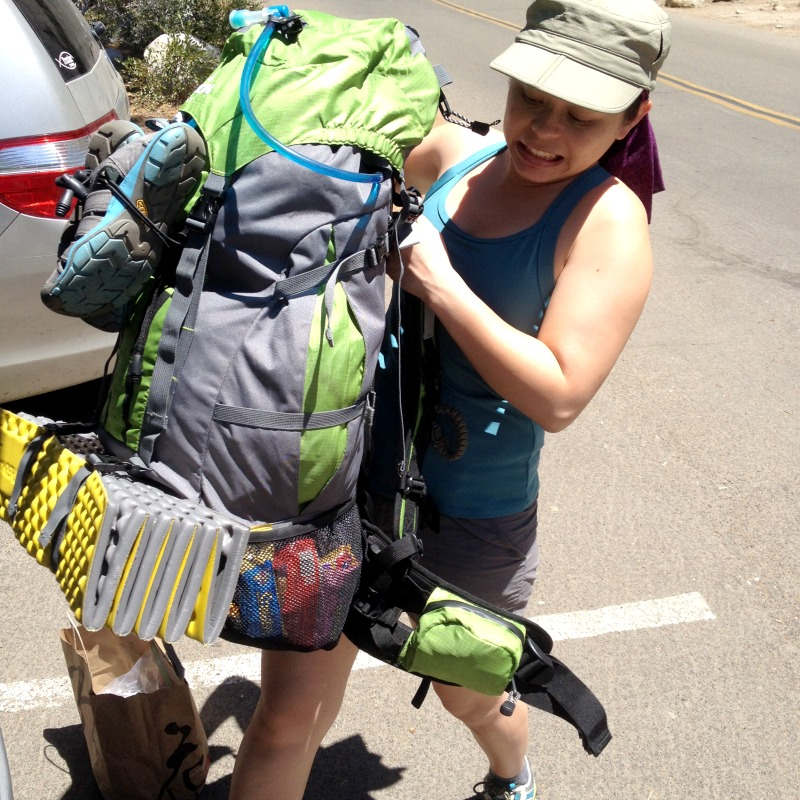 Sequoia National Park - Teton Sports Backpack - Campfire Chic